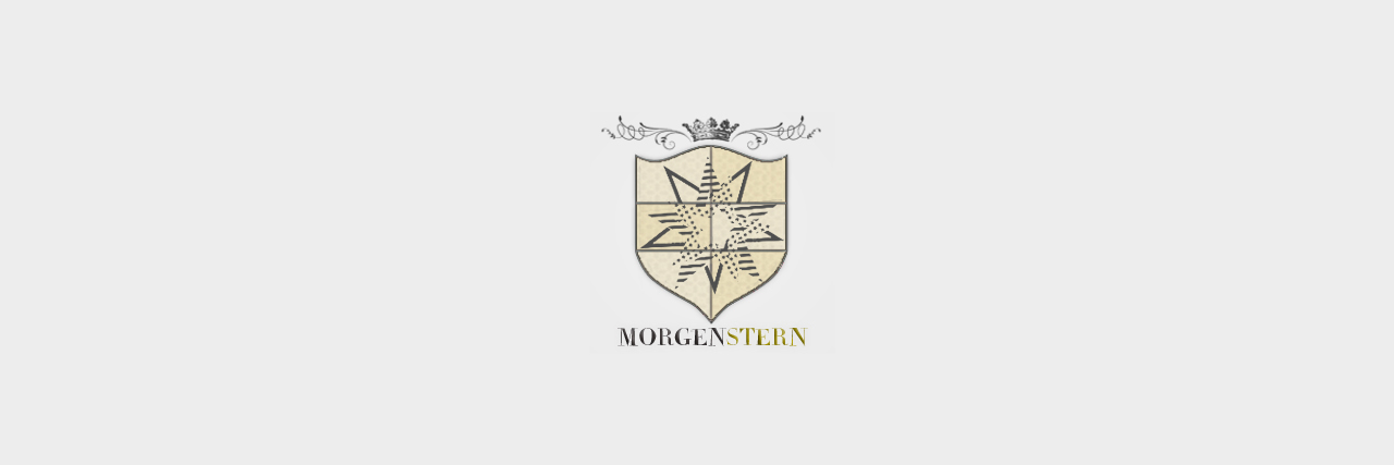The Morgenstern Institute: A Star is born